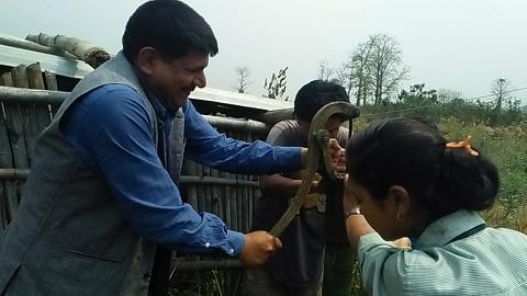 बेमौसमी खेती गर्न पाउँदा किसान खुसी